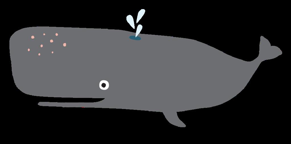 wal-klein